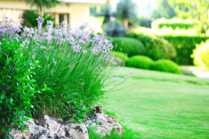 airdrie landscaping